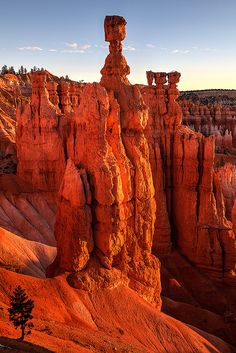 In The Shadow Of Giants  Thor's Hammer  Bryce Canyon National Park  Utah