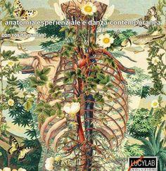 http://www.lucylab.org/anatomia-esperienziale-e-danza-contemporanea/