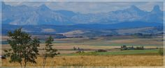 Glenbow Ranch Provincial Park near Cochrane.  Love walking with my family or running with my dogs here
