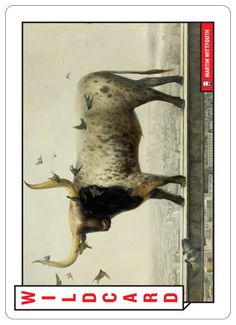 """""""52 Shades of Greed, A Finance & Occupy Wall Street themed Deck of Cards."""" Learn about who and what is breaking our financial system.   Wildcard, Occupy! by Martin Wittfooth"""