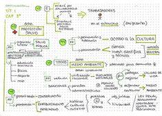 Tit I cap 3 del 42 - Handwriting, Bullet Journal, Lettering, Instagram, Madrid, Mental Map, Maps, Calligraphy, Hand Lettering