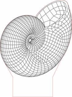 Shell LED 3D illusion lamp vector file