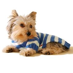 Stinky G Blue Stripe Dog Hoodie Sweater >> You can find more details here : Dog sweaters