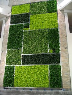 Color blocked interior living wall in the Minto Plaza (Ottawa, Canada), created GSky.