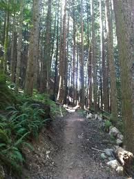 squamish 50 km trail race