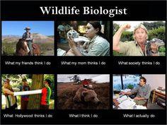 Wildlife Biology you top
