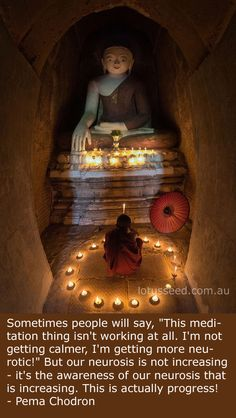 Pema Chodron quote by lotusseed.com.au