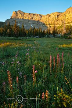 Bob Marshall Wilderness Montana