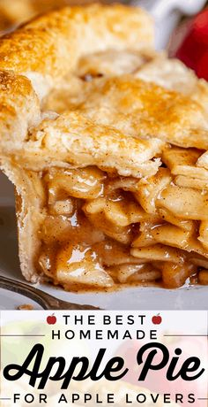 The Best Homemade Apple Pie from The Food Charlatan. I used to be a total Apple Pie hater. It's always too mushy and bland. But I've found the perfect method to make the Best Homemade Apple Pie of your life! This classic recipe has a double crust (you won't miss that crumble), a cooked filling for the best texture and flavor, and is super easy. Here's how to make it from scratch! #easy #recipe #apple #pie #doublecrust #filling #homemade #best #fromscratch #simple #fresh #homemadefilling