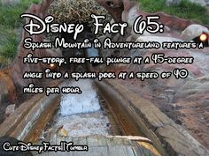 #65 - Splash Mountain in Critter Country features a five-story, free-fall plunge at a 45-degree angle into a splash pool at a speed of 40 miles per hour.