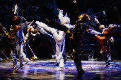 West End Frame: Production images released for Cats in Blackpool