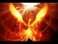 Phoenix+Bird+Drawings | Page 5: Fairy Tales