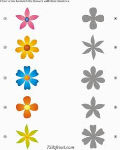 Kids Activity -Match the shadow of Flowers, Black & white Picture
