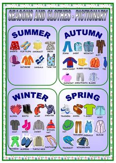 CLOTHES AND SEASONS-PICTIONARY