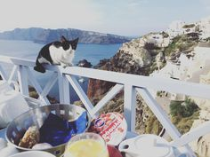 hi morning  #santorini #oia #santorinigreece #20151031 by racheltan218