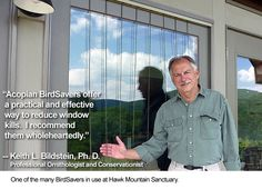 Such a simple system for making your windows visible to birds. Very zen as well!