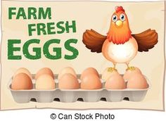 Illustration of Farm fresh eggs poster with chicken vector art, clipart and stock vectors. Chicken Clip Art, Chicken Vector, Egg Pictures, Chicken Eggs, Free Illustrations, Fresh, Poster, Royalty, Lava