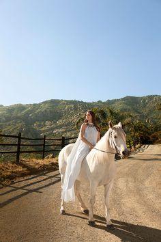 Saddle Up: Horses in BAZAAR  - HarpersBAZAAR.com