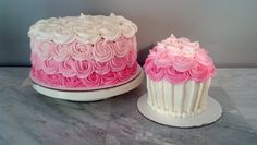 Pink Ombre Rose Cake and Cupcake Smash Cake  www.badkitty-bakery.com