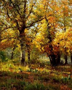 Golden Opportunity ~ Mark Haworth ~ Oil Painting, 20 x Paintings I Love, Nature Paintings, Beautiful Paintings, Oil Paintings, Painting Portraits, Indian Paintings, Abstract Paintings, Painting Art, Autumn Painting