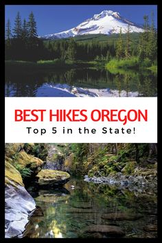 Looking for the best hikes in Oregon? Want to get out and explopre the Pacific Northwest? You'll love these five awesome hikes in Oregon! Don't miss out! They're stunning.
