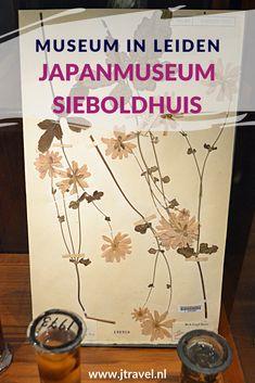 In het Japanmuseum SieboldHuis aan de Rapenburg in Leiden zie veel voorwerpen uit Japan, zoals lakwerk, keramiek, geprepareerde dieren, munten, kleding, oude landkaarten en prenten. Deze voorwerpen zijn tussen 1823 en 1829 verzameld door Philipp Franz von Siebold.  Gratis toegankelijk met je museumkaart. Meer over dit museum lees je in dit artikel. Lees je mee? #leiden #japanumuseumsieboldhuis #museumkaart #museum #jtravel #jtravelblog