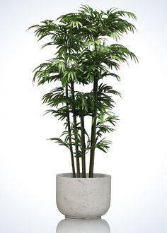 Árbol artificial, Bamboo Artificial