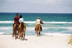Horse riding in the Walker Bay Nature Reserve