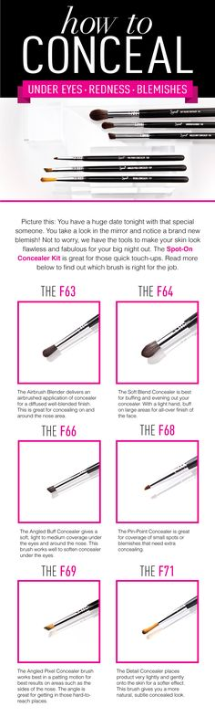 Want to know all about concealer brushes? Find on which is right for you!