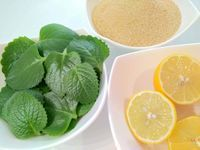 Přinášíme další recept na rýmovníkový sirup. Jak jsme již psali v našem článku o rýmovníku, i sirup velmi dobře účinkuje při nachlazení, rýmě i bolestech v krku. Lettuce, Spinach, Herbalism, Diy And Crafts, Lime, Fruit, Vegetables, Food, Fitness
