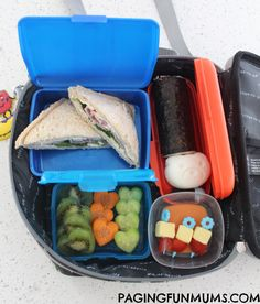 Fridge To Go Lunch Bag Review - the BEST there is!