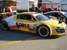 Audi R8 Grand Am, debut at the 50th Rolex24 at Daytona