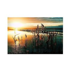 Beata Czyzowska Young Wish You Were Here Canvas Art - Multi-Colored (91 NZD) ❤ liked on Polyvore featuring home, home decor, wall art, backgrounds, canvas picture, photo wall art, photography wall art, colorful wall art and abstract home decor