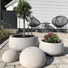 House Gate Design, Matcha, Entrance, Concrete, Garden, Plants, Inspiration, Instagram, Ideas