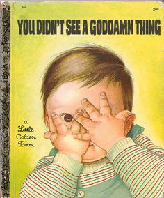 You Didn't See a Goddamn Thing ~ inappropriately bad children's book covers