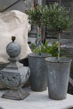 Topiary and Zinc - ATELIER DE CAMPAGNE
