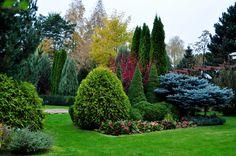 Garden-design. PROJEKTOWANIE OGRODÓW KIELCE. OGRODY KIELCE