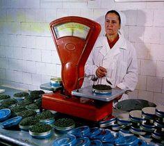 #caviar USSR