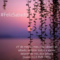 ¡Con alegría saludamos a todos nuestros amigos en éste inicio de un maravilloso sábado! #FelizSabado