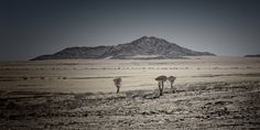 at the end of nowhere #3 by Norbert Gräf   ...stunning picture of Namimbian desert