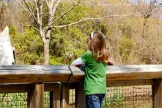 A Day in Waco, Texas - R We There Yet Mom? | Family Travel for Texas and beyond...