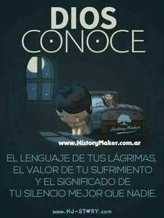 Conoce