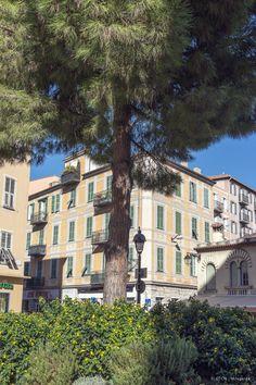 La place des Pins - Nice Côte d'Azur