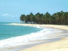 Praia do Gunga em Barra de São Miguel, estado de Alagoas, Brasil.