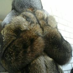 just made few photos of me in my newly arrived tanuki fur coat combined with various furs from my collection that i showed in previous… Coyote Fur Coat, Fox Fur Jacket, Bear Coat, Mens Fur, Arctic Fox, Fur Fashion, My Collection, Good Looking Men, Mantel