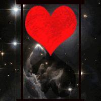 Animated Gif by JoanBlalock Beautiful Flowers Images, Flower Images, Beautiful Hearts, Gif Photo, 1 Gif, The Power Of Love, Photo Heart, Love Photos, Romantic Couples