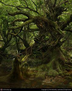 The Green Man Awakens, Phil McDarby (2D)
