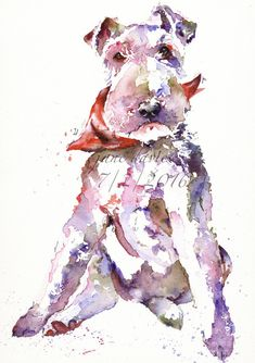 Pet portrait of a fox terrier painted in watercolour by artist Jane Davies Fox Terriers, Chien Fox Terrier, Wire Fox Terrier, Watercolor Fish, Watercolor Drawing, Watercolor Animals, Watercolor Paintings, Watercolours, Yorkshire