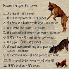 I found that these same property laws also pertain to any two year old toddler!