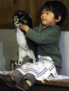 Hisahito so cuteee